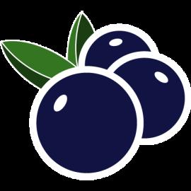 logo-bidberry